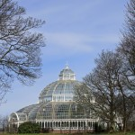 Sefton Park Palm House, Liverpool Photograph