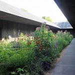 Serpentine Pavilion 2011 Interior 2