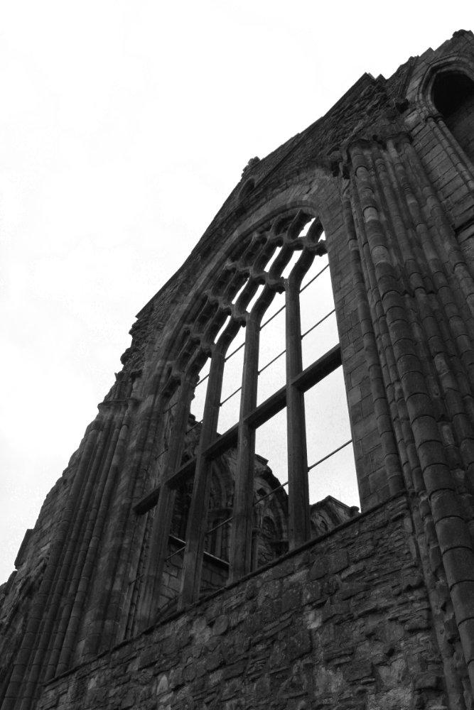 Holyrood Abbey Window 2017